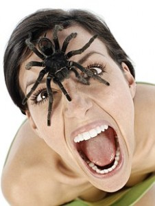 spideronwomans face